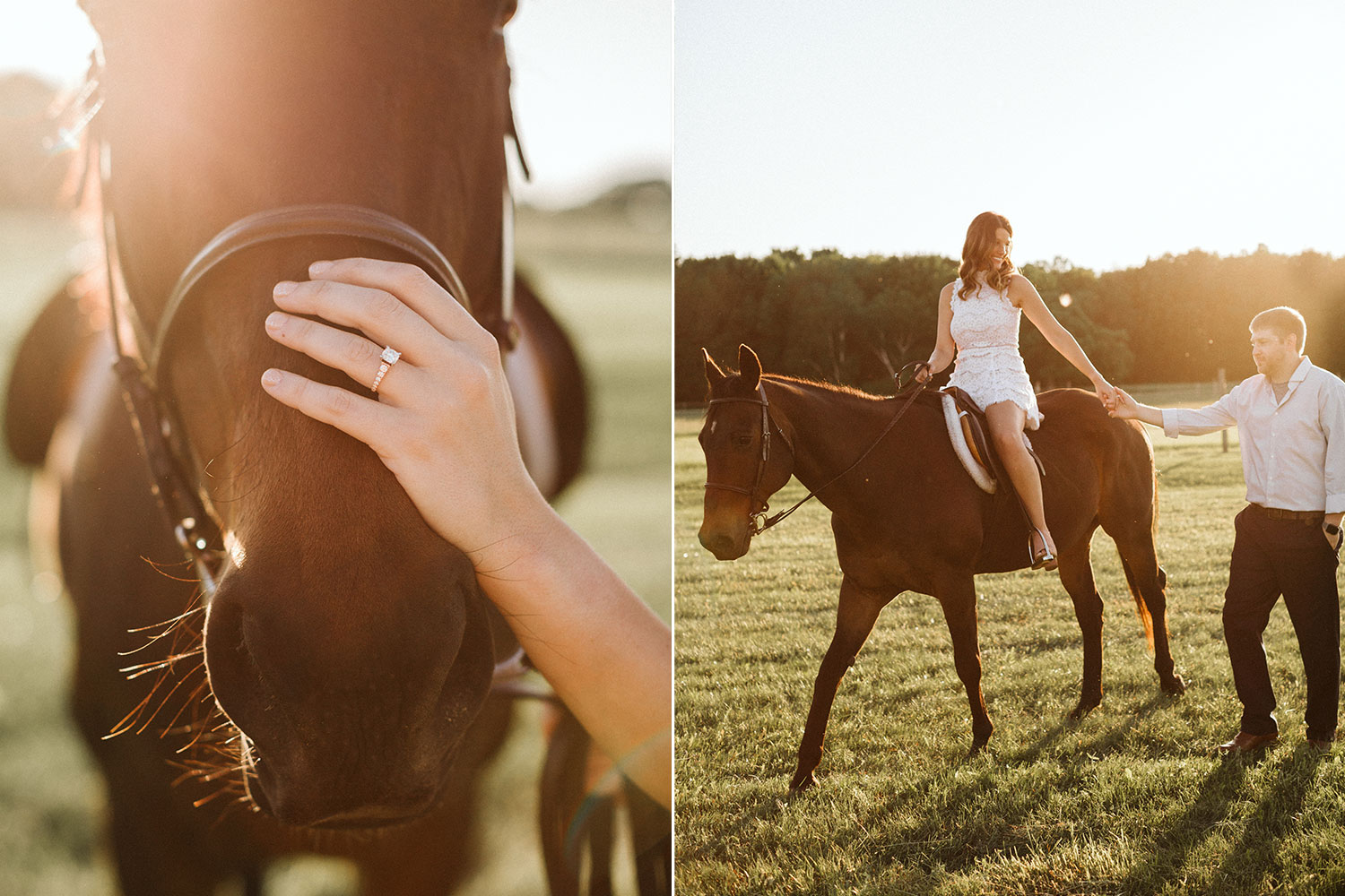 engagement-session-with-pet-horse